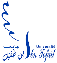 Université Ibn Tofail